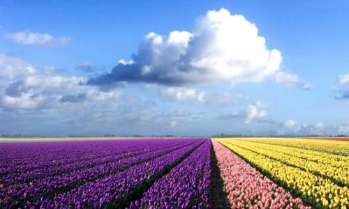 najpiekniejsze-krajobrazy-011-500x300