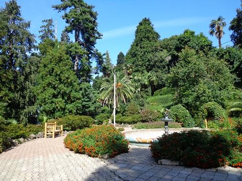Ogród Botaniczny w Batumi