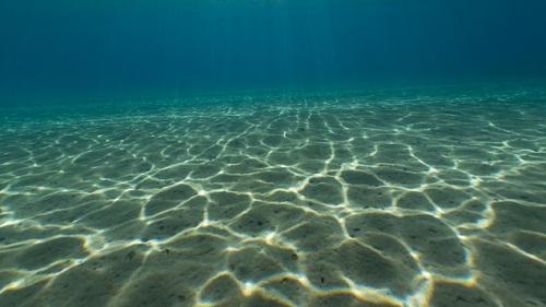 Dno-morz-oceanu