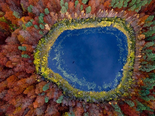 autumn-lake-eastern-pomerania-poland_63604_990x742