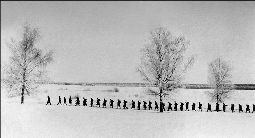 5 Pułk Piechoty - Legionów pod Dyneburgiem