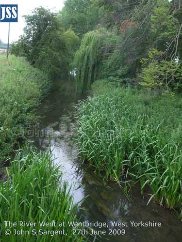 Wentbridge-River-Went--27th-June-2009-l